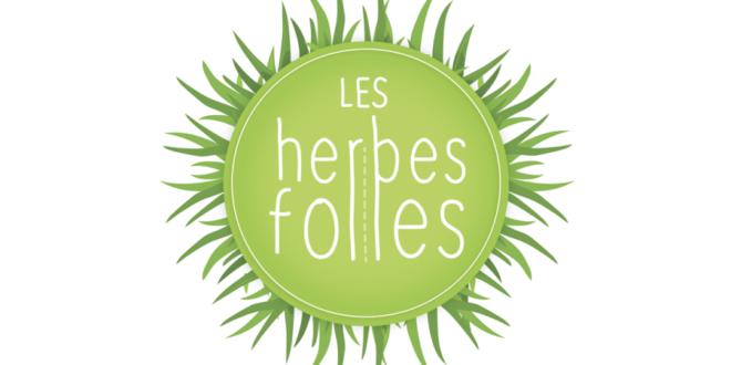 logo Les Herbes folles, atelier mobile de Tiphaine Fatou dans les Hauts-de-France