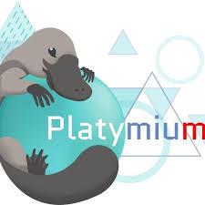logo plateforme internet Platymium