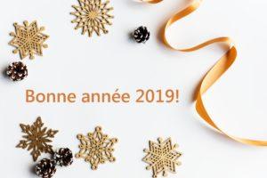 Bonne année 2019 - émission Les Mains se livrent