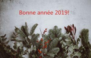 Bonne année 2019 - La Vie des Livres